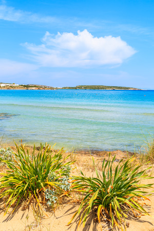 View of beautiful sandy Santa Maria beach with azure sea water on coast of Paros island, Greece Stock Photo