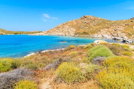 Spring flowers on beautiful coast in Monastiri bay on Paros island, Greece Stock Photo