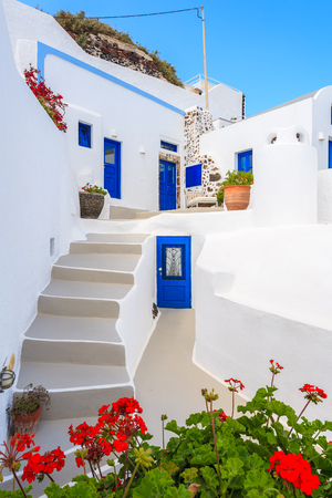 Flowers in foreground and steps to typical Greek houses in Imerovigli village on Santorini island, Greece 免版税图像