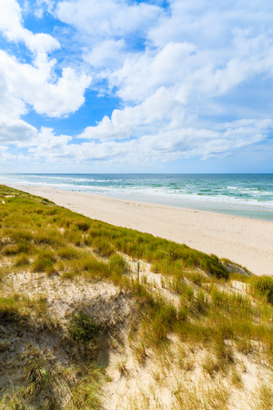 Grass on sand dune and view of beach in List village, Sylt island, Germany