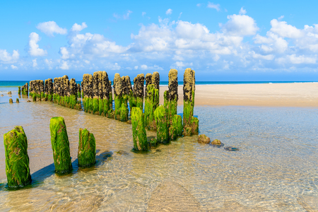 Wooden breakwaters on sandy beach near Rantum village, southern Sylt island, Germany