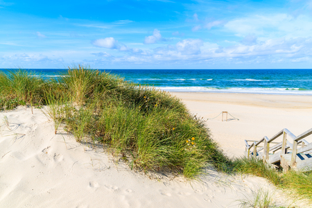 Green grass on sand dune at List beach, Sylt island, Germany Stock Photo