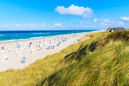 View of grass sand dune and beautiful beach in Kampen village on Sylt island, North Sea, Germany