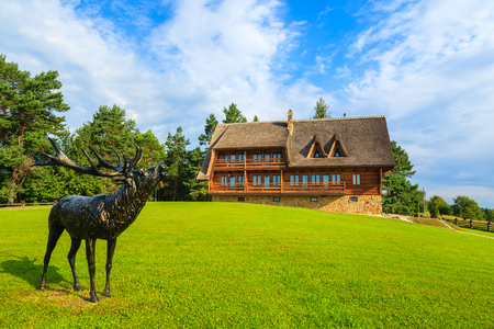 Deer statue in front of traditional mountain house in a village near Arlamow, Bieszczady Mountains, Poland