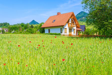 House on green field with poppy flowers in Pieniny Mountains, Poland