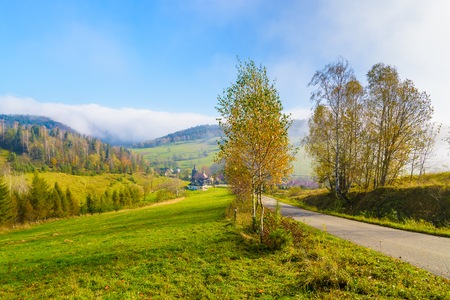 Countryside road to village in autumn landscape of Beskid Niski Mountains on sunny day, Poland
