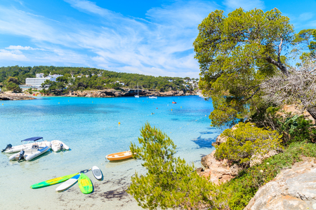 Green pine tree on cliff rock overlooking beautiful Cala Portinatx bay with surfboards and dinghy boats on azure sea water, Ibiza island, Spain