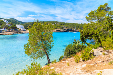 Green pine tree on cliff rock overlooking beautiful Cala Portinatx bay with azure sea water, Ibiza island, Spain Stock Photo