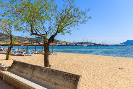 Sandy beach in Pollenca Port with green trees in blossom, Majorca island, Spain