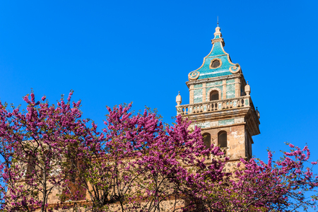 Blooming tree with violet flowers and church tower in Valdemossa village, Majorca island, Spain