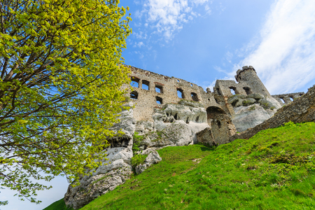 Beautiful castle in Ogrodzieniec near Krakow in spring, Poland