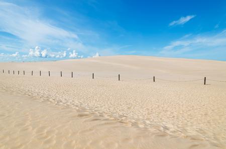 Wooden poles on sand dune in Slowinski National Park, Poland Foto de archivo