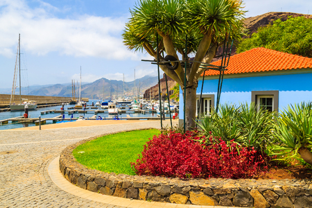 Colourful house with tropical plants in sailing marina on coast of Madeira island, Portugal