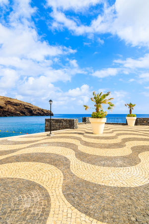 Palm trees in pots on coastal promenade along ocean near Canical town, Madeira island, Portugal Stock Photo