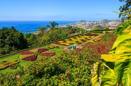Monte tropische tuinen in Funchal-stad, het eiland van Madera, Portugal