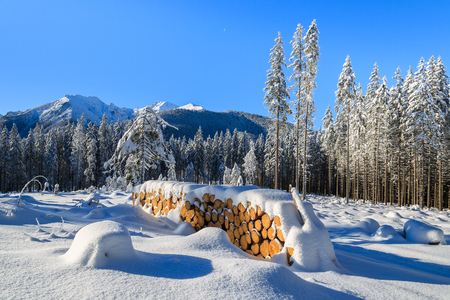 Winter landscape of Rusinowa polana, Tatra Mountains, Poland