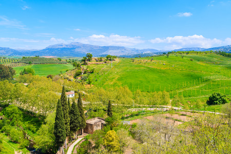 Green landscape of Spanish countryside in Ronda town, Andalusia, Spain Stock Photo