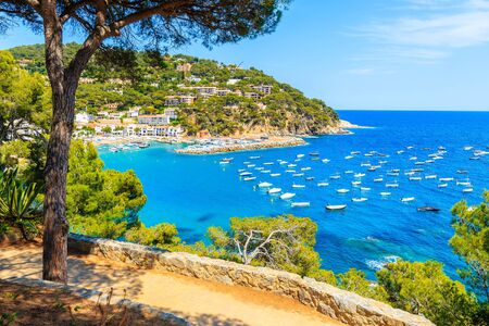 Viewpoint over beautiful bay with boats on sea near Llafranc village, Costa Brava, Spain
