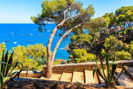 Steps on coastal path to Llarfanc town with sea in background, Costa Brava, Spain