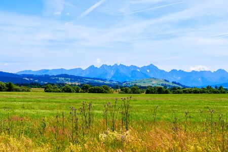View of Tatra Mountains and green fields on summer day, Poland