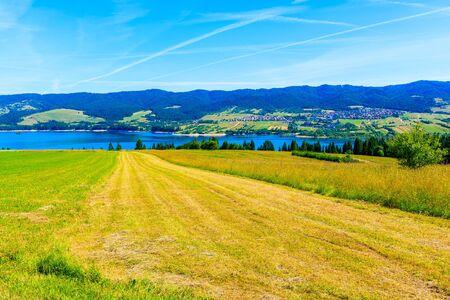 Green countryside landscape near Czorsztynskie lake on beautiful summer day, Pieniny Mountains, Poland