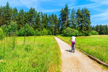 Young woman riding bike in forest on cycling way around Tatra Mountains on sunny summer day, Poland Reklamní fotografie