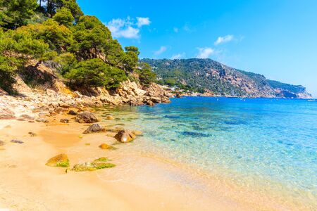 Beautiful sandy Aiguablava beach, Costa Brava, Catalonia, Spain