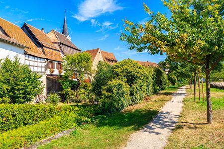 Walking path in park of Kientzheim village on Alsatian Wine Route, France Reklamní fotografie