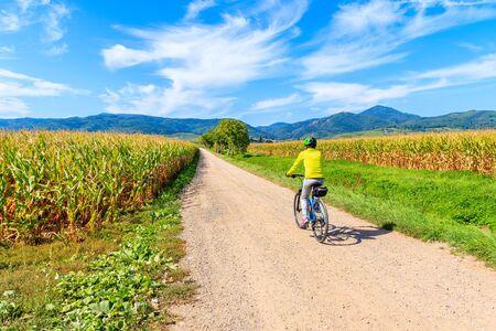 Young woman cyclist riding along Alsatian Wine Route near Ribeauville village, France Reklamní fotografie