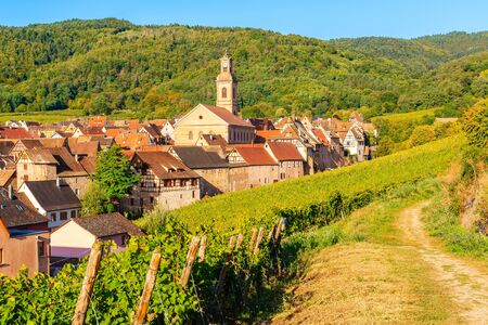 View of Riquewihr village and vineyards on Alsatian Wine Route, France