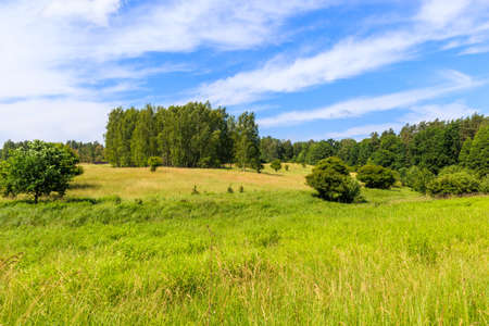 Green summer meadow and forest landscape in Wygryny village near lake Nidzkie, Mazury Lake District, Poland