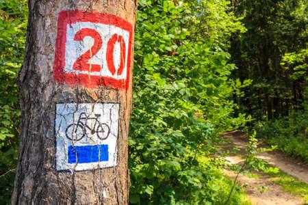 Cycling sign on tree on forest road near Mikolajki town, Masurian Lakes, Poland