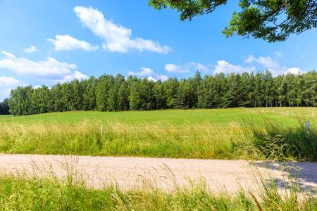 Cycling road among green farming fields near Krutyn village, Masurian Lakes, Poland 免版税图像