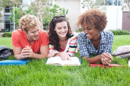 group of happy college students lying in the grass with notebooks photo