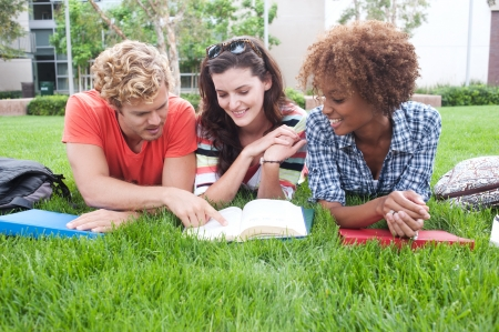 sociable: group of happy college students lying in the grass with notebooks Stock Photo