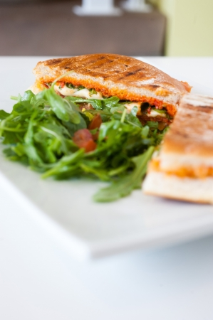 italian ciabatta panini sandwich with chicken and tomato on a white plate photo