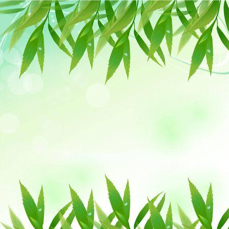 leaf background Stock Vector - 9941890