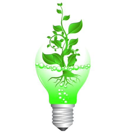 seedling growing: illustration of plant sapling in broken light bulb