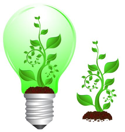 tungsten: Stock Photo: Tungsten light bulb with plant inside