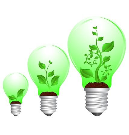 tres planta verde en el ciclo de crecimiento de bombilla sobre fondo blanco