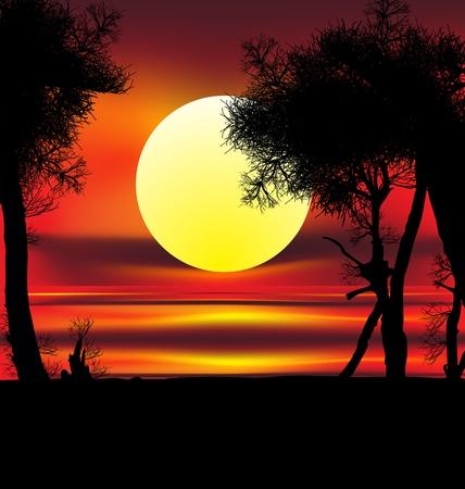 Beautiful african sunrise reflected on lake, with backlit acacia tree on Amboseli Natural Par