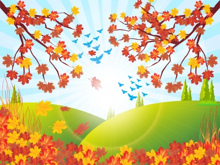 autumn landscape: Autumn scenery Illustration