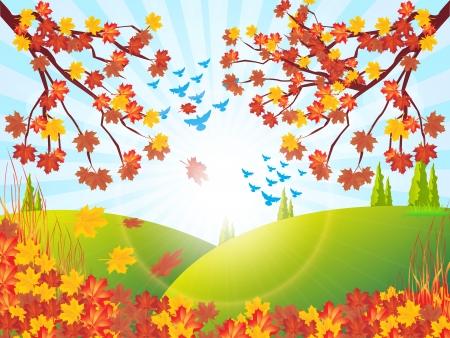 beaux paysages: D�cor de l'automne