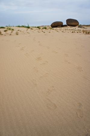 Footprints at 3000 Bok  3 photo