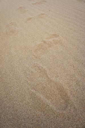 Footprints at 3000 Bok  2 photo