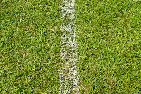 level playing field: White stripe on the green soccer field
