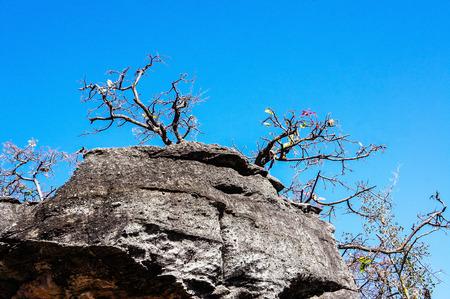 phu: Phu Pha Thoep National Park