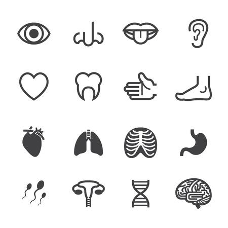 cerebro: Iconos de médicos con fondo blanco