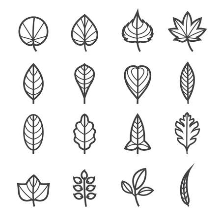 흰색 배경과 패턴의 잎 아이콘 일러스트
