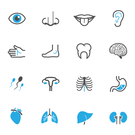 hearts and hands: Human Anatomy Icons